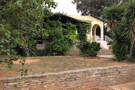 House with garden in Lagonissi - Kalivia Thorikou - House