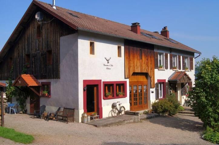 CHAMBRES D´HOTES BELLEVUE,  Hoge Vogezen - Ban-sur-Meurthe-Clefcy - Bed & Breakfast