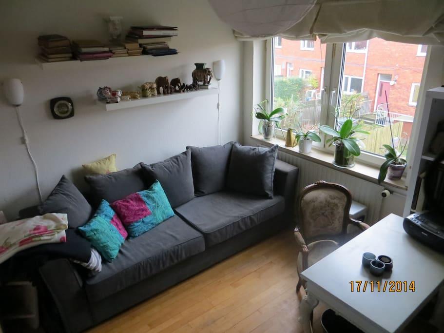 Værelse med sofa/enkelseng.