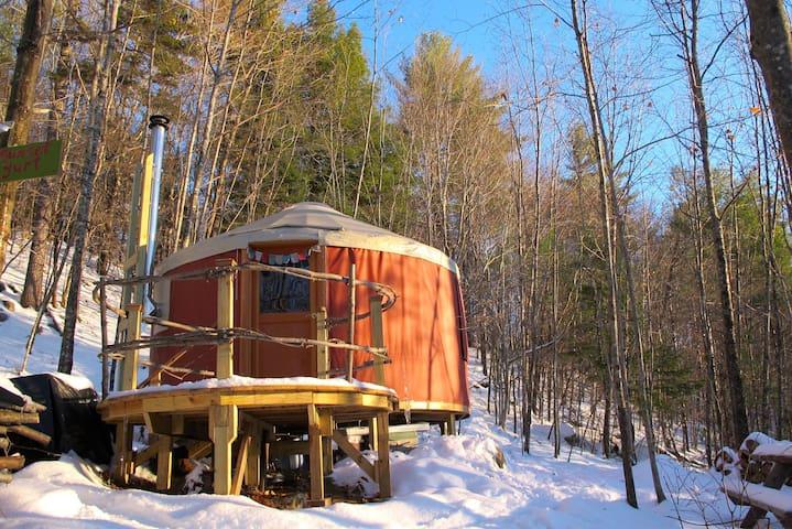 Sunset Yurt Off-The-Grid Retreat - Denmark