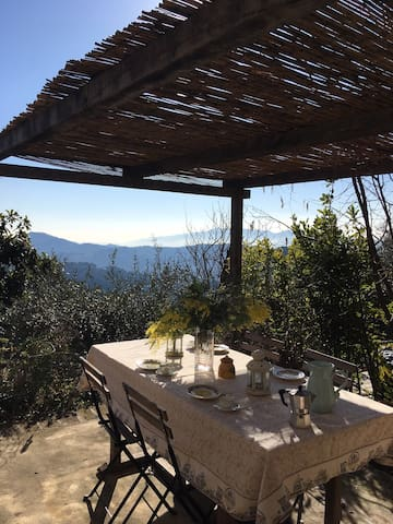WIDE HOUSE BETWEEN THE LUCCA'S HILLS AND  THE SEA - Fibbiano - Talo
