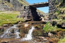 Waterfall in local area.