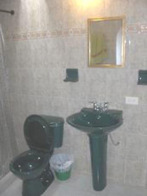 Vista del baño principal
