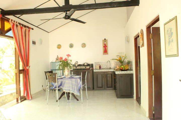 Dionis villa: Shakti Apartment