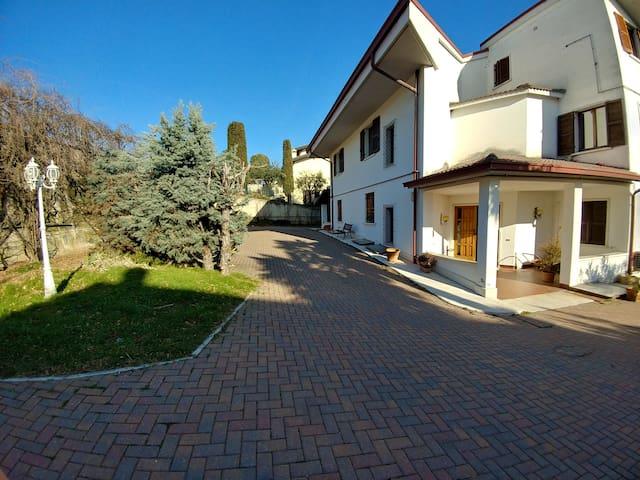 Monticelli Five