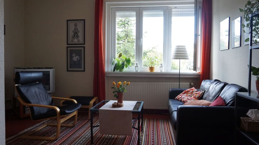 Cosy 3 bedroom apartment in the hills of Buda - Budapest - Apartment