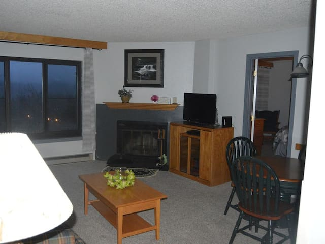 No Frill, low cost 2 bdrm condo in Silver Creek