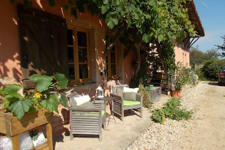 CHAMBRE D HOTES LA CASSINETTE - Romenay - Gästehaus