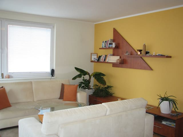 Affordable apartment to enjoy - Bratislava - Apartamento