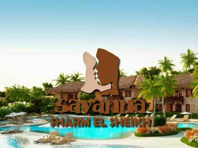 The Bluebay Savanna resort ☆☆☆☆☆