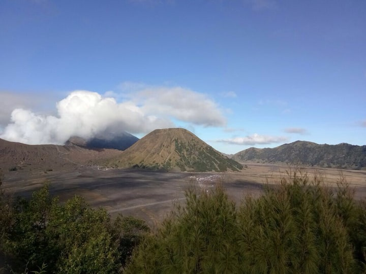 Decent place at Ngadisari stay near Mt. Bromo