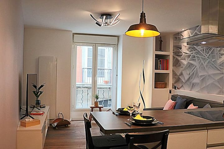 SUPERB EQUIPPED APARTMENT - GRENOBLE CITY CENTER