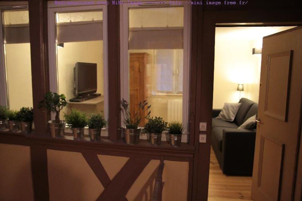 Appartement 1 pi ce vue cath drale appartements louer - Appartement meuble a louer strasbourg ...