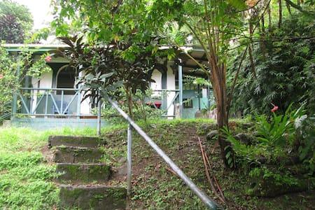Guest Cottage in Tropical Garden - Trafalgar - Blockhütte