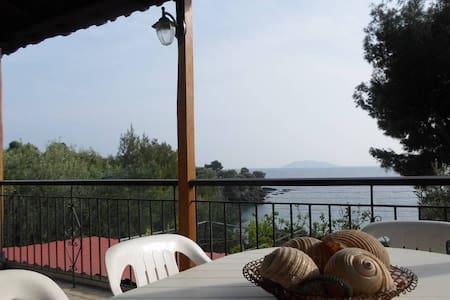 A wonderful house Plus...!!!! - Ελιά Νικητής - House