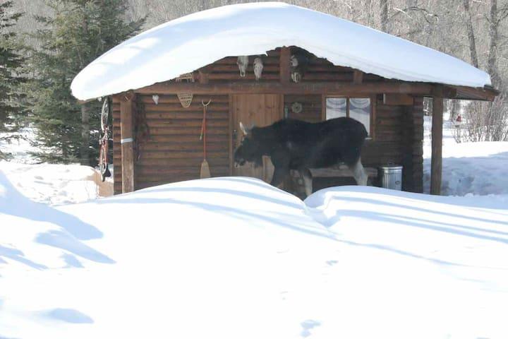 Cozy log cabin - Kelly - Casa de campo