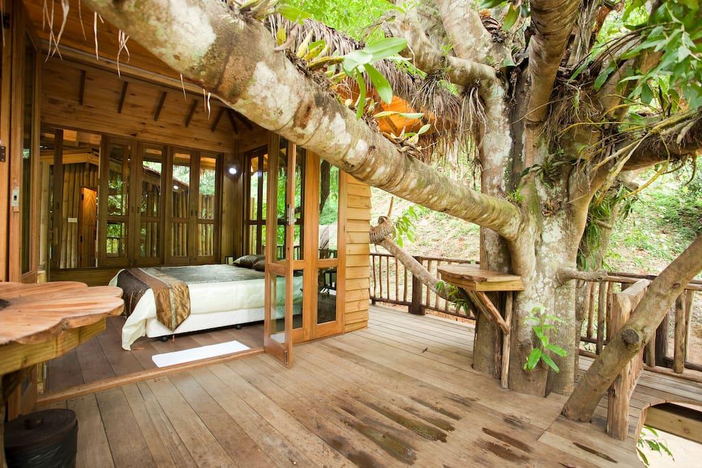 Outside Tree house bedroom