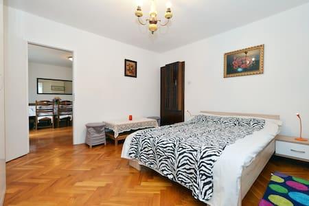 Vesna room number 3 - Zagrzeb - Dom