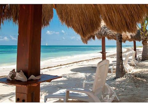 Beachfront & pool-front: Heaven on your doorstep !