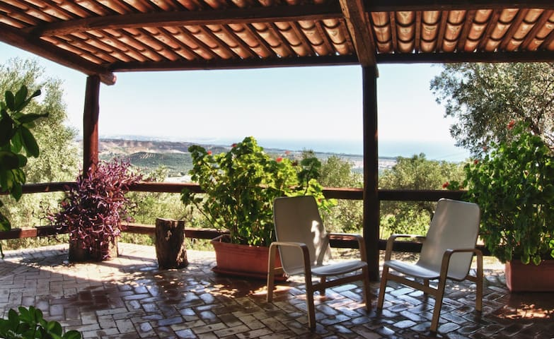 Villa among the olive trees, overlooking the sea
