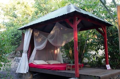 Dormir dans un carbet sous les Cocotiers