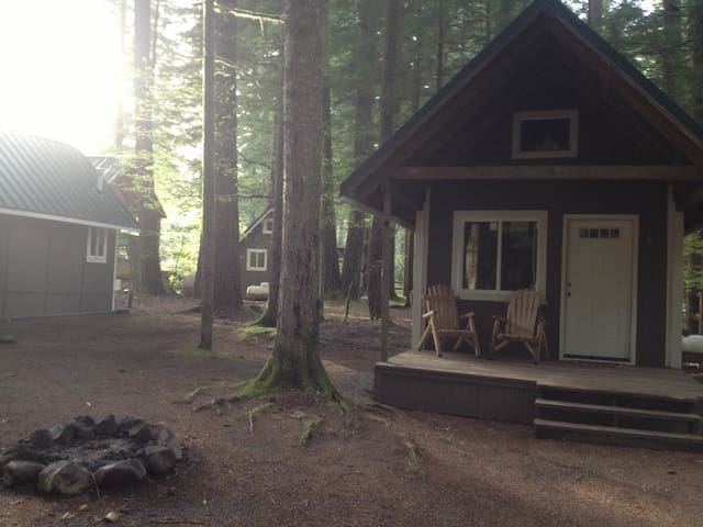 Cabin near Mt. St. Helens - Skamania - Cottage