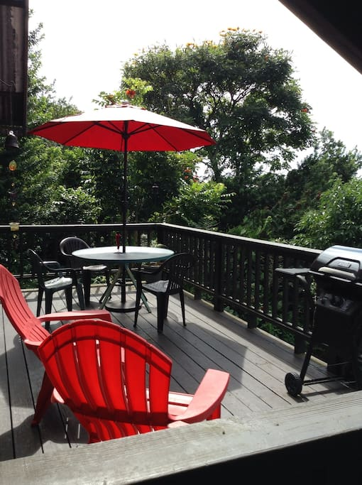 Spacious lanai (deck). A super relaxing place to enjoy a meal or conversation with an ocean view. Stargazing from here is also amazing.