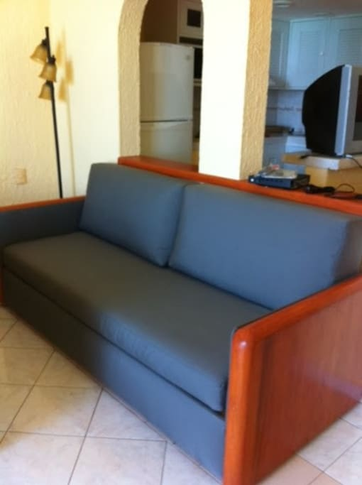 ONE SOFA IN THE UNIT. KITCHENETTE IS ON THE RIGHT