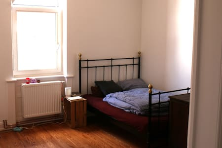 1 Room Aschaffenburg (close to main station) - Aschaffenburg - Huoneisto