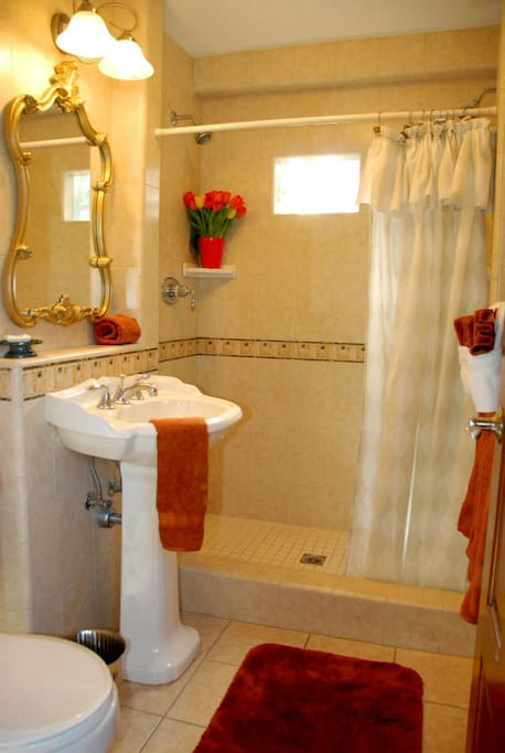 Bathroom showing shower with 2 shower heads