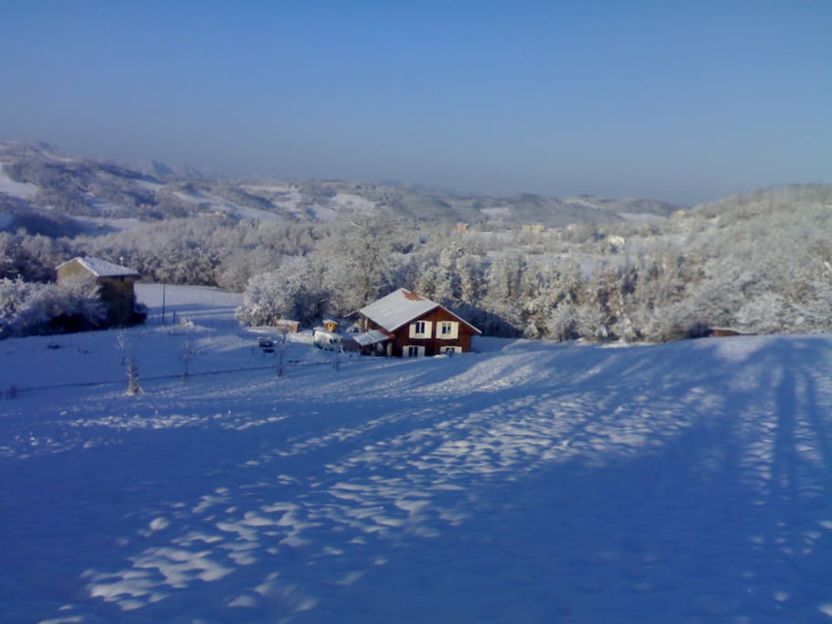 in winter