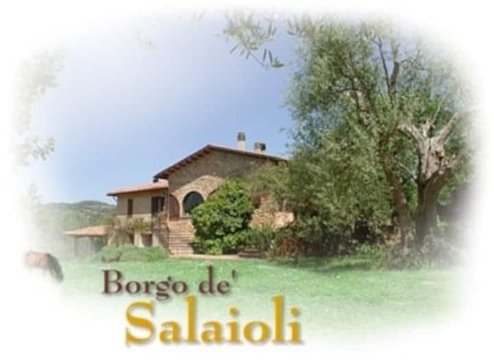 Salaioli Hamlet - Farm Holidays
