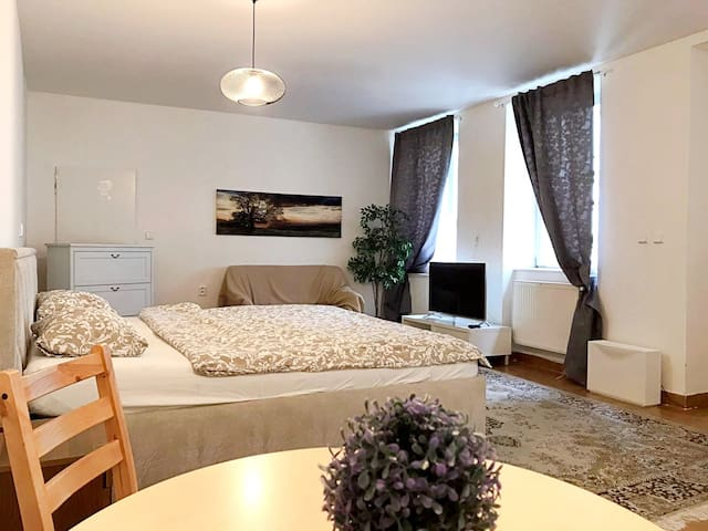 ☆AWESOME Apartment near the Charles Bridge☆