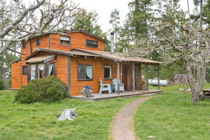 Home in the Redwoods with Orchards by the Coast