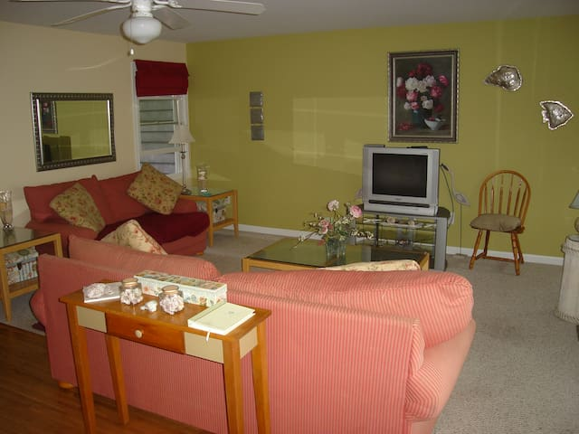 Living room with pull out queen couch.