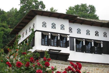 18th-century mansion (triple room) - Vizítsa - Bed & Breakfast