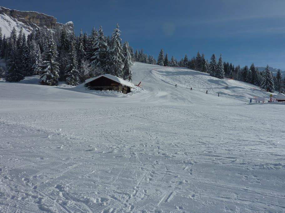 Piste de ski station de Plaine  Joux