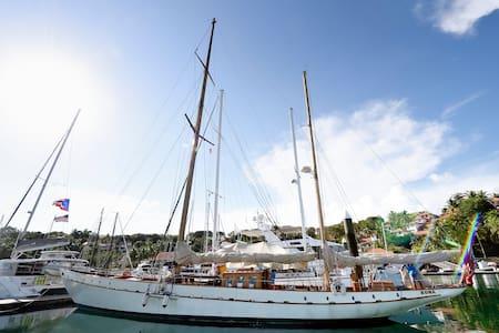 Luxury Yacht Rona Circa UK 1895