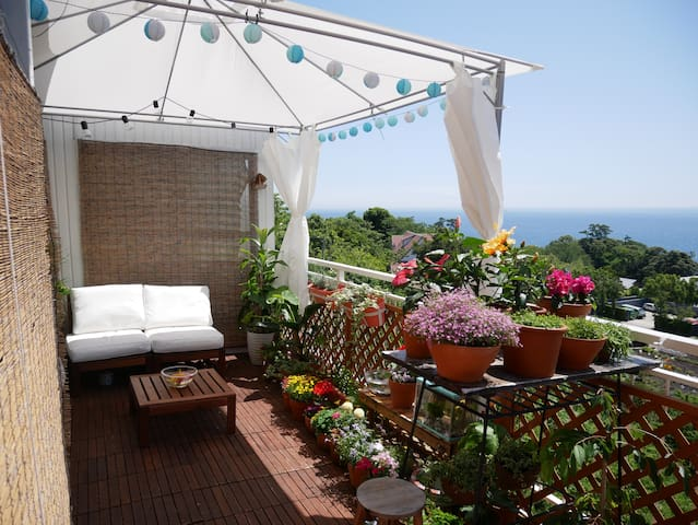 Entire  house with ocean view, 5 to 20people