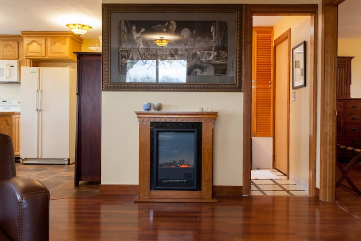 cozy electric fireplace and nice artwork