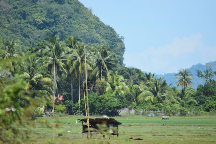 Pulau Tuba Home with a view