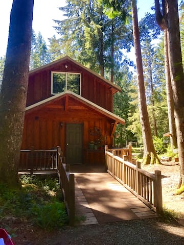 Path to paradise cabin at mt rainier cabanes louer for Cabine vicino a mt ranier