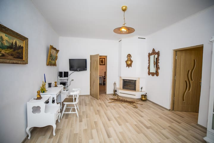 Central Cozy Vintage Apartment Intim,  Arad