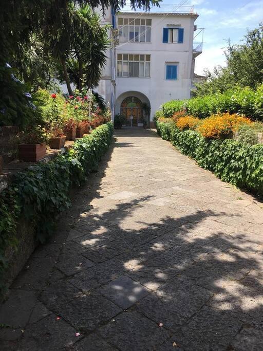 Casa vacanze villa fortunata maisons louer piano - Casa fortunata ...