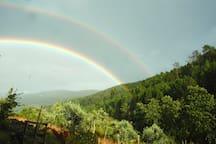 Lucky rainbow day...
