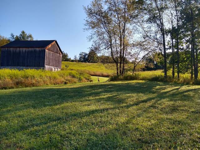 Barn View Getaway  34 Acres Near Hunt/Fish Areas