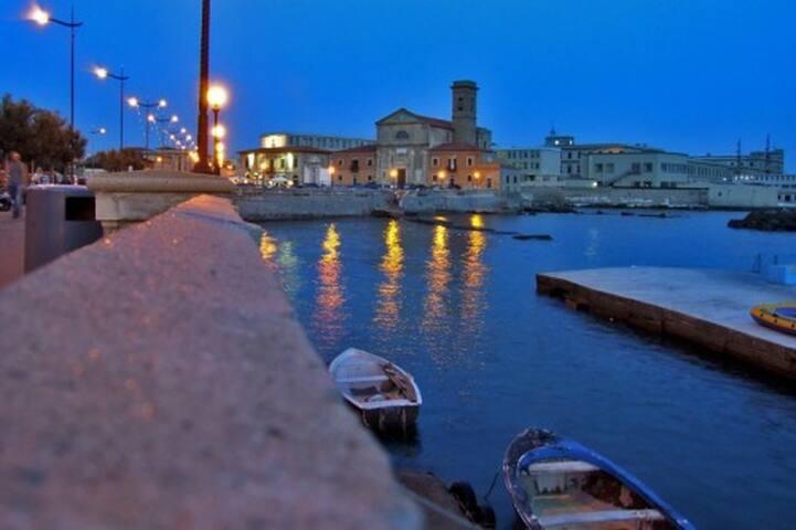 Casa Vacanza BlueNavy - sul mare Terrazza Mascagni - Livorno - Huis