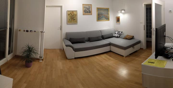 Spatious & cosy apartment + FREE parking & WiFi