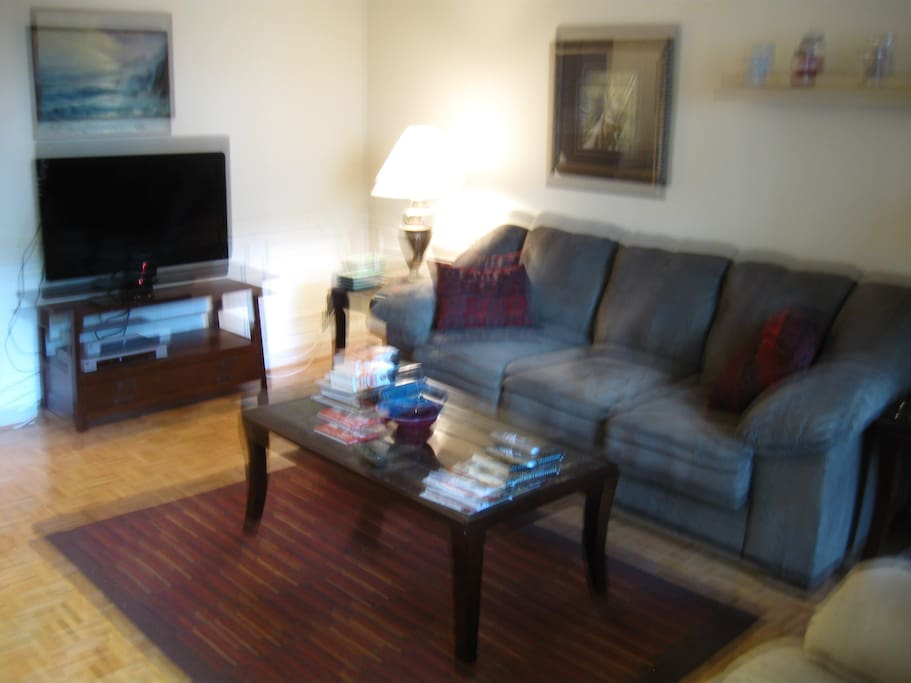 Upscale furniture with HD TV