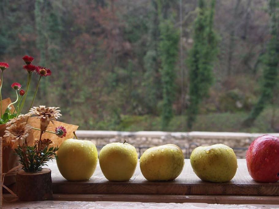 Le mele che produciamo